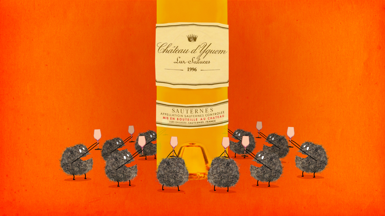 Le Sauternes